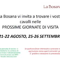 21-22 AGOSTO, 25-26 SETTEMBRE 2021 WEEKEND DI VISITA CAVALLI A RIPOSO
